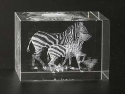 Лазерная голограмма в хрустале Зебры