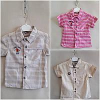 Рубашка нарядная для мальчиков короткий рукав 5-8 лет.Турция .Оптом