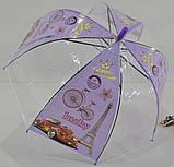 Зонт парасолька дитячий прозорий купольний Париж для дівчинки 4-8 років, фото 2