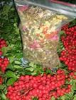 Лечебные ароматические травы