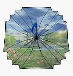 Женский зонт трость Лондон, фото 5