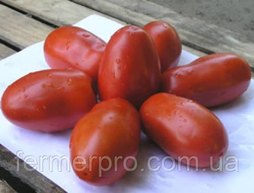 Семена томат Инкас F1 1000 семян Nunhems