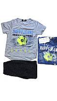 Костюм летний-двойка (футболка, шорты)  для мальчика оптом, S&D, размеры 1-5 лет, арт. CH-3977