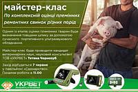 Майстер-клас по комплексній оцінці племінних ремонтних свинок різних порід