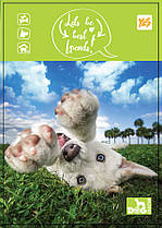 Тетрадь Yes A6 боковая спираль 80 листов клетка Dog collection