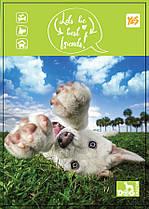 Зошит Yes A6 бічна спіраль 80 аркушів клітинка Dog collection