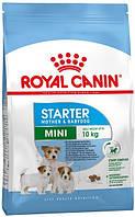Royal Canin Mini Starter, 8,5 кг