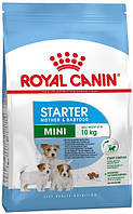 Royal Canin Mini Starter, 1 кг