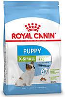 Royal Canin Xsmall Puppy, 500 гр