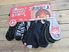 Шкарпетки нові (12 пар в уп.), СТОК, Німеччина