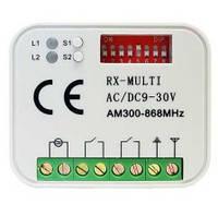 MULTI RX - Приемник универсальный внешний 2-кан / Gant