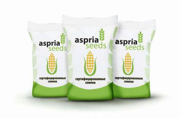 Семена кукурузы Асприя Сидз АС 34002, ФАО 190