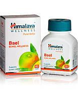 Баел, Bael (60tab) улучшает переваривание и всасывание пищи, обладает ветрогонным, слабительным, вяжущи