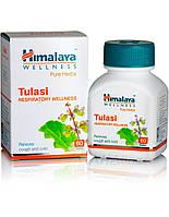 Туласи, Tulasi (60cap) потогонное, жаропонижающее, укрепляющее нервы, противоспазматическое, антибактериальное