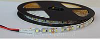 Светодиодная лента LED 3528-120 12V IP33 белая