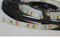 Светодиодная лента LED 3528-120 12V IP33 теплая