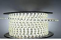 Светодиодная лента 5050-60 220V -1 IP67 Холодно-белая