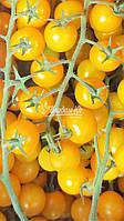 Семена томата ГОЛДВИН F1 , 250 семян, фото 1