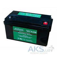 Аккумулятор для ИБП EverExceed AGM 12V 222Ah ST-12200
