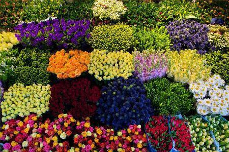 Наша забота о качестве цветов