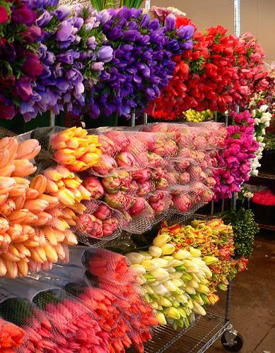 Наша забота о качестве цветов 4