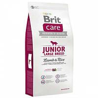 Brit Care (Брит Кеа) JUNIOR LARGE BREED Lamb & Rice - корм для щенков крупных пород 12кг