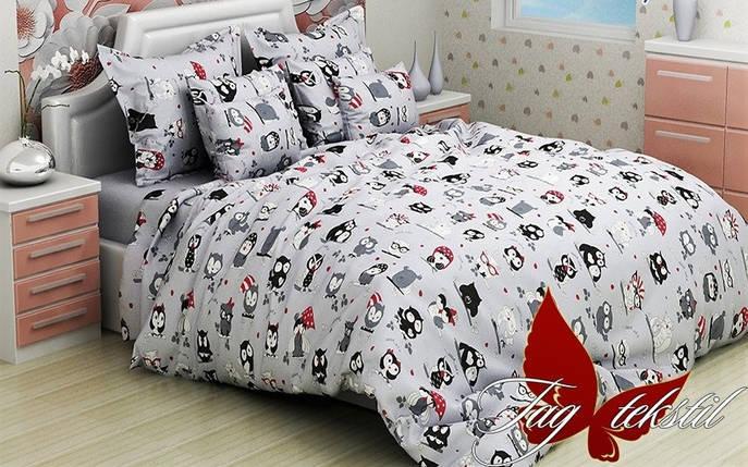 Детский комплект постельного белья с Совами, Ранфорс, фото 2