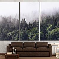 Картина - Туманный лес