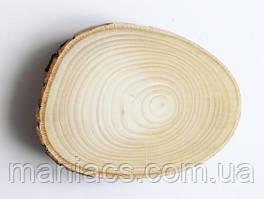 Срез дерева. Липа 21 - 25 см