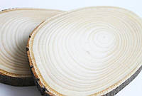 Срез дерева. Липа 26 - 30 см