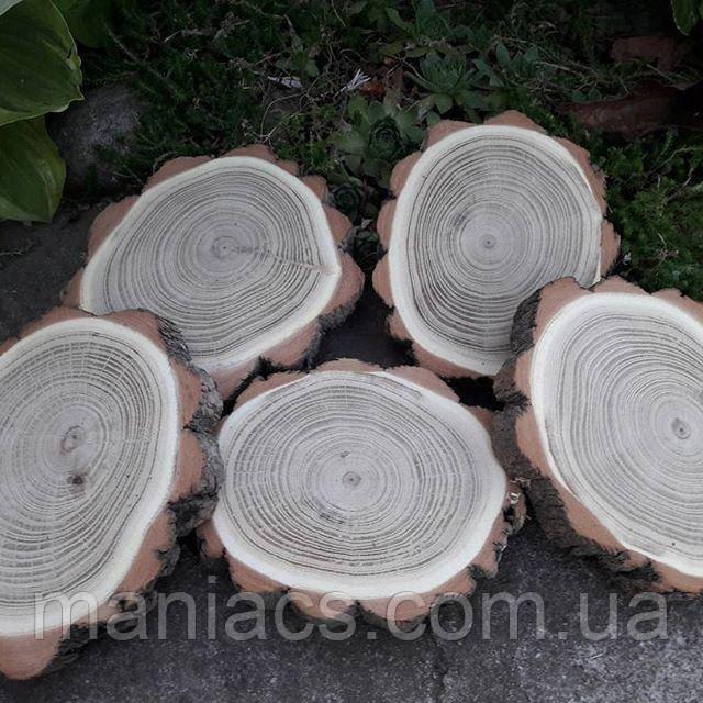 Срез дерева. Акация 8 - 10 см
