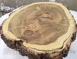 Срез дерева. Акация 31 - 35 см