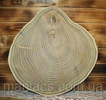 Срез дерева. Акация 35 - 40 см