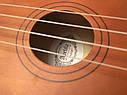 Укулеле Сопрано Apelila BR (Чехол+Комплект струн+Медиатор+2 наконечника на пальцы), фото 10