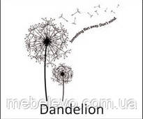 Novelty Dandelion