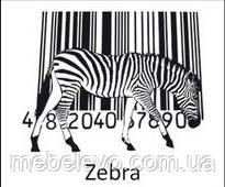 Novelty Zebra