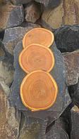 Срез дерева. Дуб 10 - 15 см