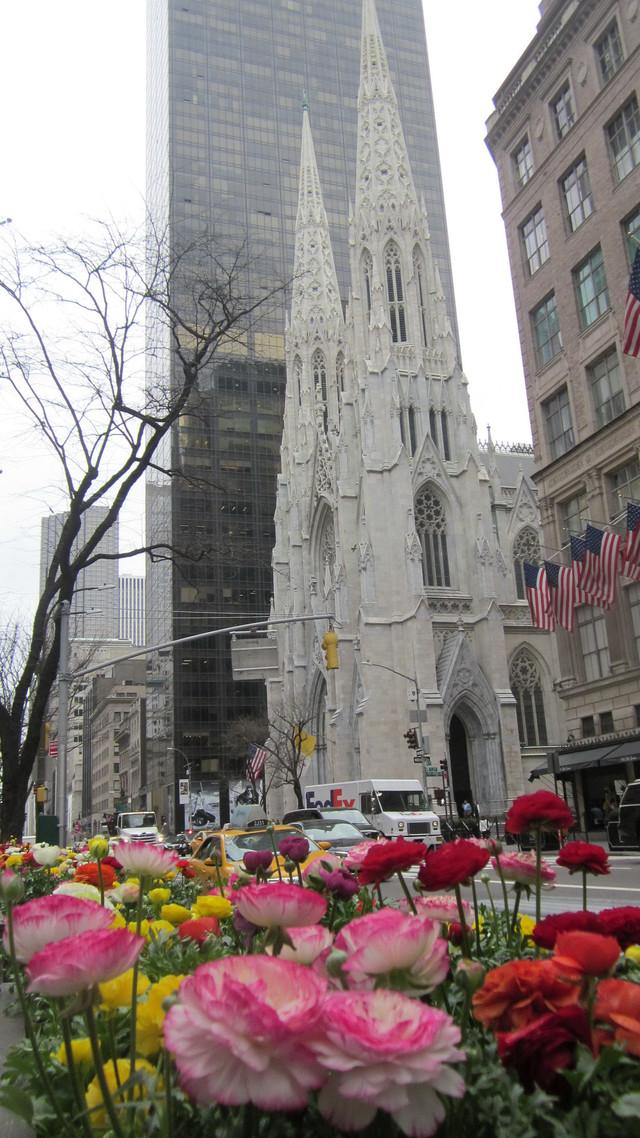 Раздел Трикотажные юбки - фото teens.ua - Нью-Йорк,собор Святого Патрика