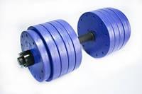 Гантель 27 кг. разборная фиолет металл/пластик