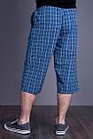 Чоловічі бриджі в клітинку (плащівка), синього кольору, фото 2