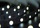 Светодиодная лента Lumex SMD 3528 (60 LED/m) IP20 Econom, фото 3