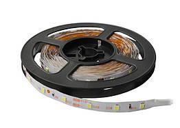 Светодиодная лента Lumex SMD 3528 (60 LED/m) IP20 Econom