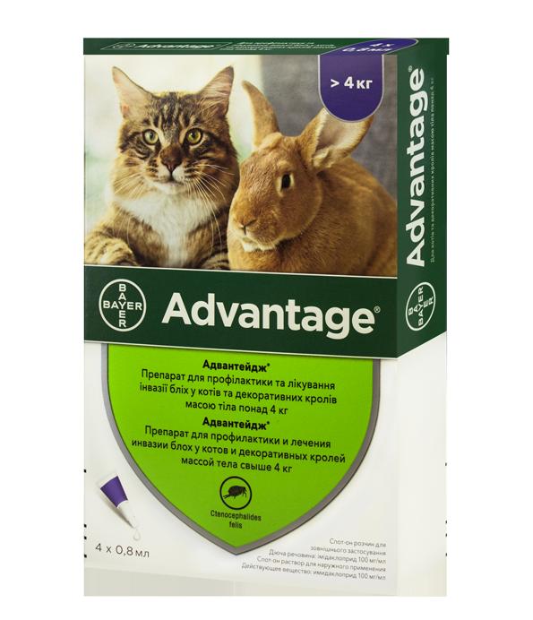 Краплі на холку Адвантейдж для котів понад 4 кг