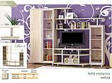 Ріо-3 стінка Меблі-Сервіс 2300х1706х550 мм, фото 2