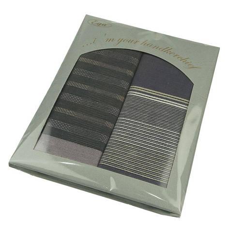 Подарунковий набір носових хусток Ega 2 шт СН-840С, фото 2