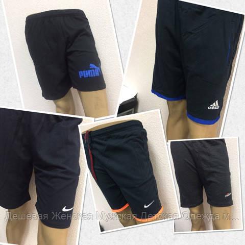 Мужские шорты трикотажные модель на выбор