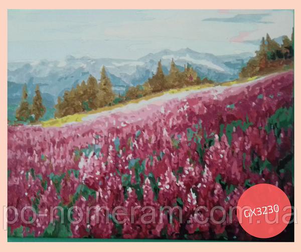 Раскраска по номерам лавандовое поле
