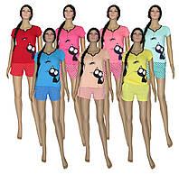 Пижама женская летняя 03231 Pauchok, футболка с шортами, хлопок, р.р.40-58