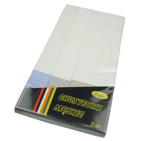 Чоловічі носові хустки в подарунковій упаковці Ega 3 шт 0105С, фото 2