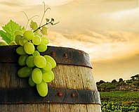 Фотообои ArtWalls Фотообои: Виноград на закате FAD-073 Песок